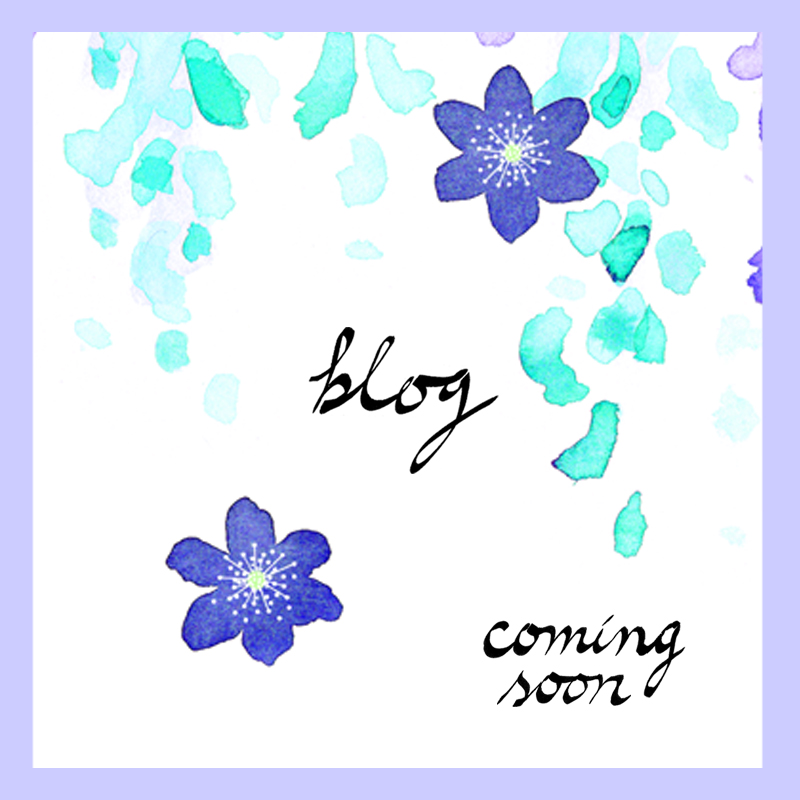 blog coming soon